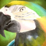 Liza Makarova. 9 years old. Parrot. Oil painting. 2011