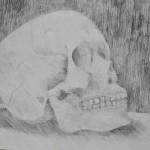 Madina Shaykhytdinova. Skull. Still life. 2012.  12 years  old