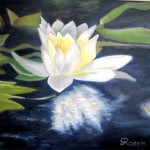 Gitana Rassin. Water Lily. Oil Painting. 2012
