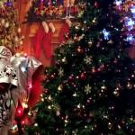 ChristmasCalgary1